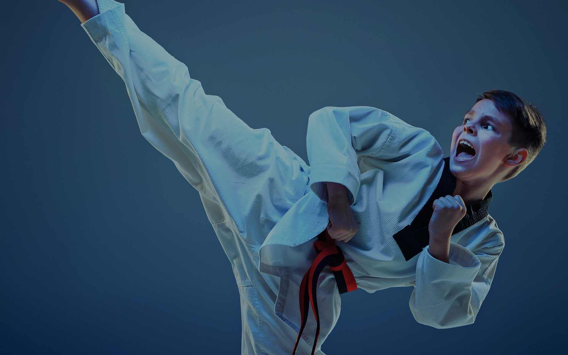 Campamento de inglés, multiaventura + karate